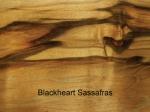 Blackheart Sassafrass